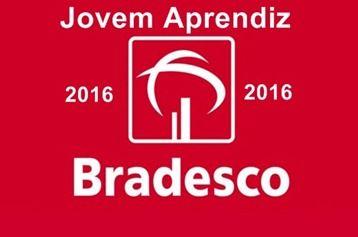 Inscrição no Programa Jovem Aprendiz do Bradesco 2016  http://www.meuscartoes.com/2015/11/inscricao-programa-jovem-aprendiz-bradesco-2016.html