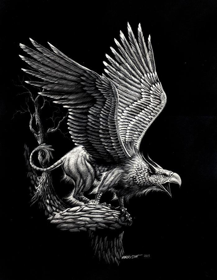 Screaming Griffon Drawing  - Screaming Griffon Fine Art Print