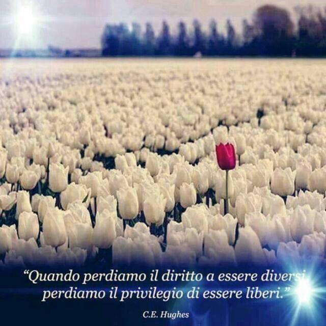 Citazioni Libertà Essere