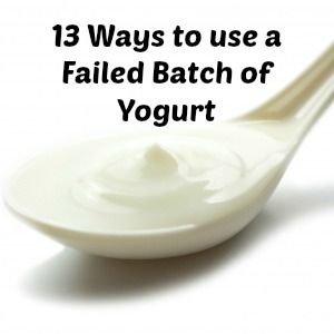Failed Yogurt ~What can you do with Runny Yogurt? - A Proverbs 31 Wife