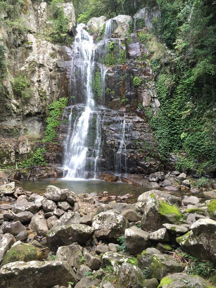 Falls, Minnamurra Rainforest