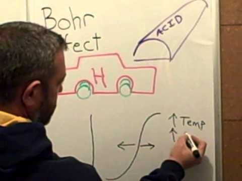 Easy Concepts - The Bohr Effect