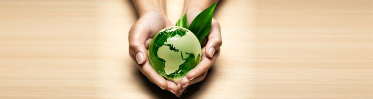 mission statements examples for organic skin care - Google Search