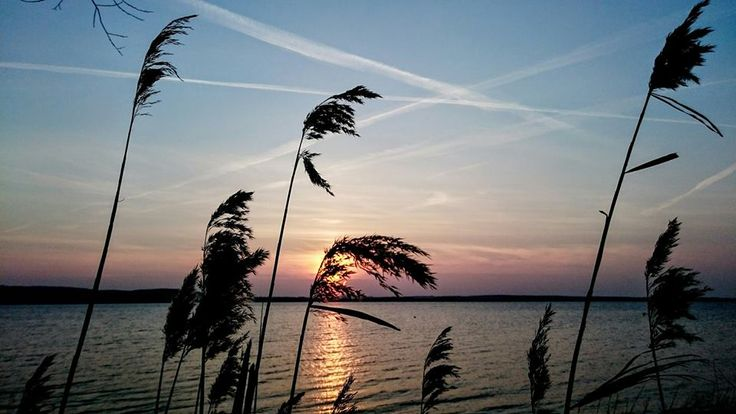 Wschód słońca nad Jeziorem Żarnowieckim