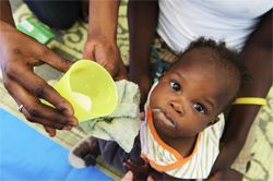 donate a UNICEF's Survival Food Pack (therapeutic milk, food, water purification tablets and micronutrient powder and biscuts) in someone's name