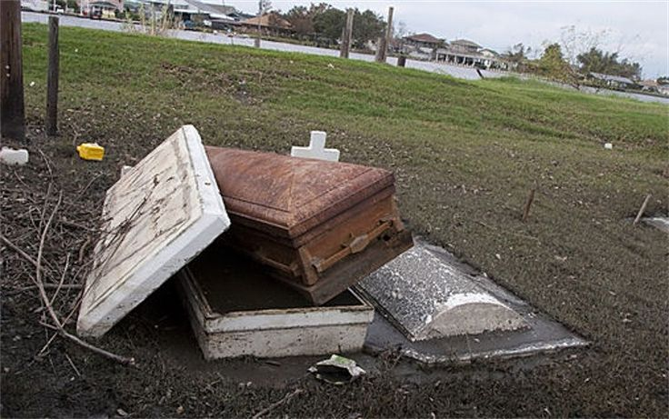Caskets protrude through above ground tombs next to the bayou in Lafite, after the area was flooded by Hurricane Katrina
