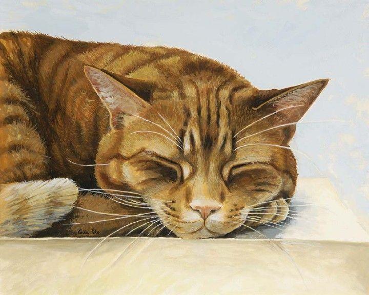 Celia Pike: Cat Art, Animal Art, Paintings Cat, Adorable Animalia, Cat Paintings, Awesome Cat, Artists Cat, De Celia, Celia Pike Paintings