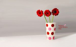 nice Red Flower For Valentines Day HD Wallpaper Picture