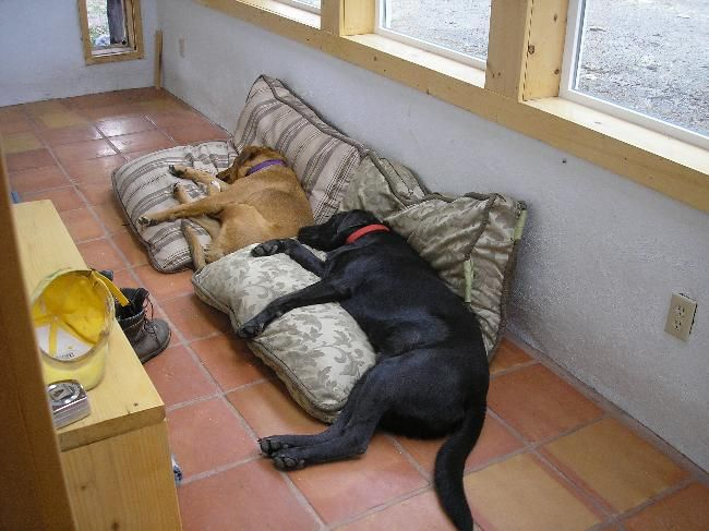 Adobe home in the mountains  House Sitter Needed  rural; house on 45 ac., between Taos-Santa Fe, Penasco   Taos,New Mexico United States  Mar 27,2014 For 11 days   Short Term Not a member? Join today to contact homeowner misternm Roomy adobe home, very private, hike, ski from the door, passive solar with wood stoves, all utilities, internet, 3 friendly dogs, 2 cats, 2 donkeys, no-fuss minimal care required. Country road, all-wheel drive or 4-wheel dr. sometimes needed (hilly