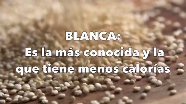 TIPOS DE #QUINOA Conoce los DIFERENTES TIPOS DE QUINOA y sus #beneficios. #yoga #salud #wellness