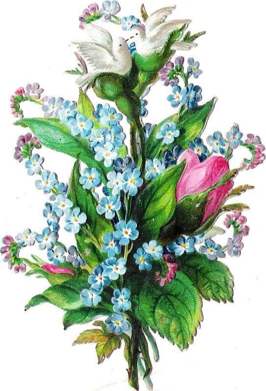 Oblaten Glanzbild scrap die cut chromo Taube dove colombe 10,3cm forgetmenot