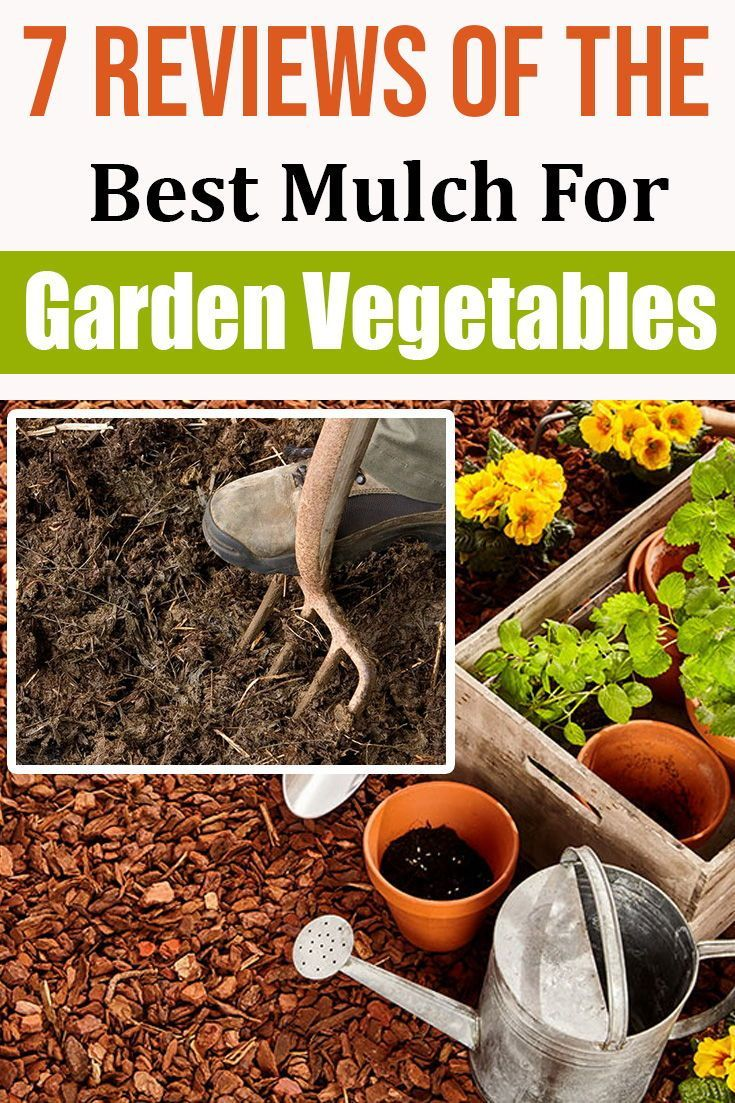 7 Reviews Of The Best Mulch For Garden Vegetables Best Mulch For
