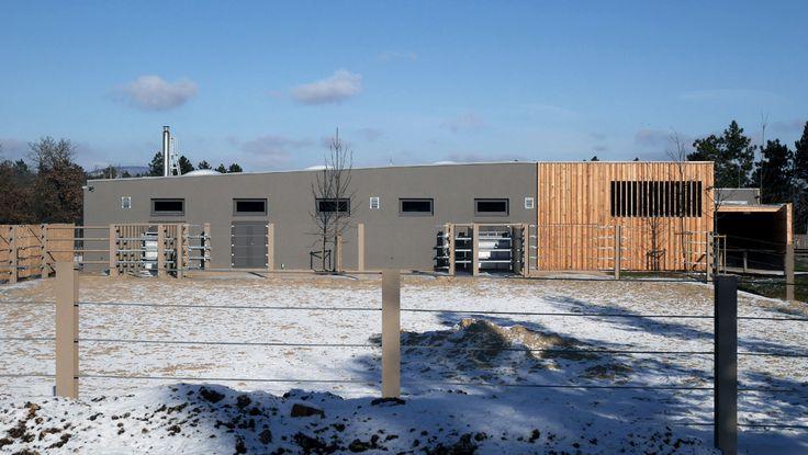 RHINOCEROS HOUSE / Location: Zoo Veszprém / Veszprém H-8200 Hungary / Planning: 2013 / Completed: 2014 / Project area: 900 sqm (building) + 1500 sqm enclosure