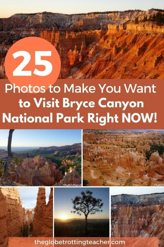 25 Photos to Make You Want to Visit Bryce Canyon National Park Right Now- From bright orange landscapes to the fairytale hoodoos, Bryce Canyon National Park is a complete one-of-a-kind! #Utah #unitedstates #travel #BryceCanyon #nationalparks #findyourpark #adventuretravel #outdoor