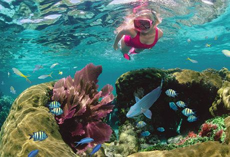 Best Places to Snorkel in The Florida Keys & the Caribbean | Colorfulplaces.com #snorkel #outdoortraveler #travelguide
