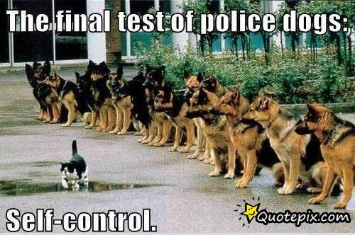 SELF-CONTROL At Its Best ;)