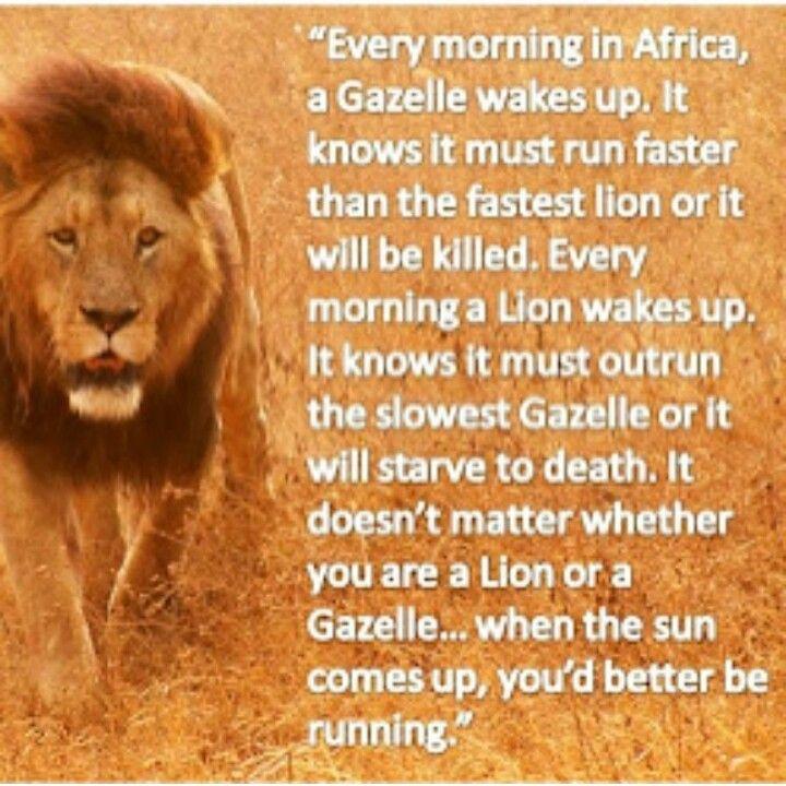 Gazelle Or Lion. U Better Wake Up Running