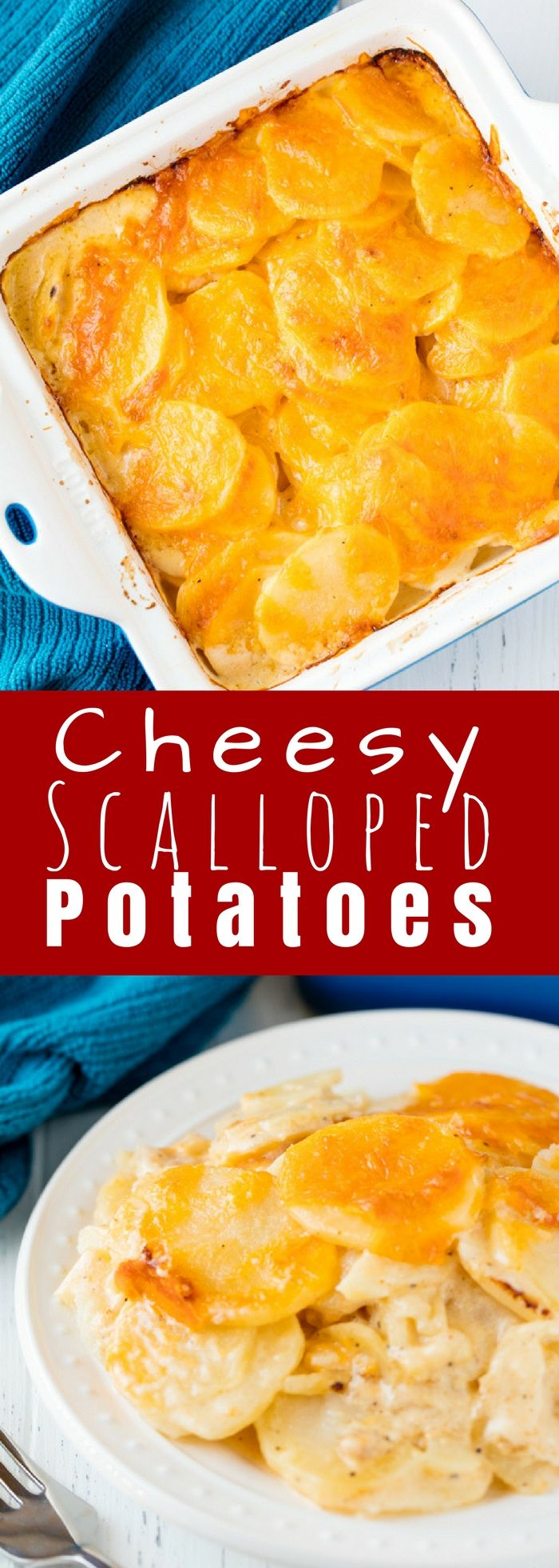 The Best Scalloped Potatoes are easier to make than you might think! This scalloped potato recipe has a classic creamy sauce and is topped off with extra cheese for cheesy scalloped potatoes that are total comfort food.