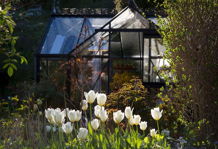 Visste du at du ikke trenger å ha grønne fingre for å få en fin hage? Å få en hage som bugner av blomster er ingen kunst. Men det kan ta litt tid. Og kreve litt kunnskap. Kom i gang med vårt gratis hagekurs.