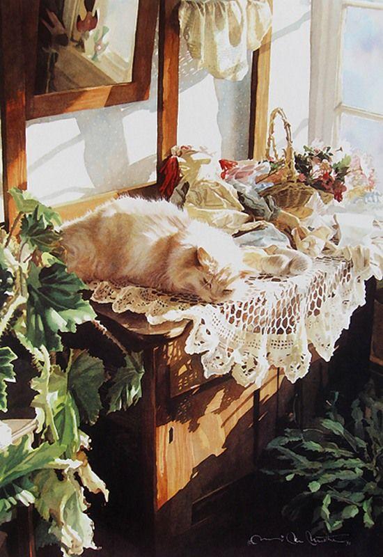 Suzi Mather: солнце и кошки