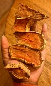 Sweet Potato Dog Chews - slice sweet potatoes lengthwise and dehydrate in the oven at 250 degrees for 3-4 hours