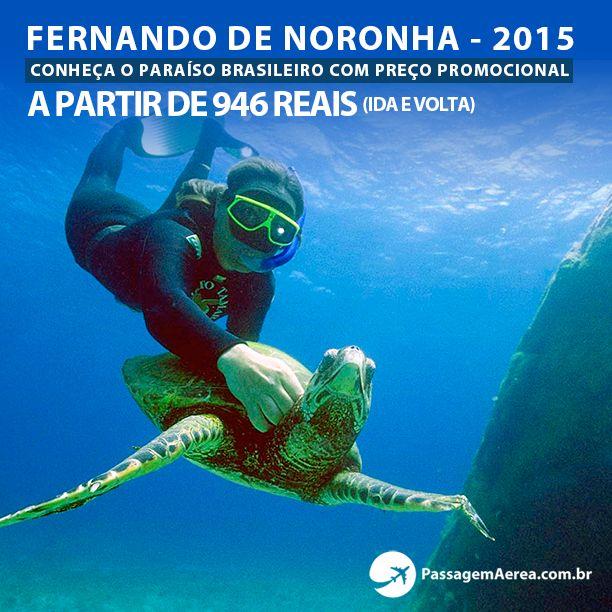 Fernando de Noronha com preços promocionais.  Veja mais no site: https://www.passagemaerea.com.br/promocional-fernando-noronha-2015.html  #fernandodenoronha #noronha #brasil #passagemaerea