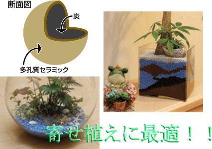 インドアガーデニングや植物の植え替え・寄せ植えには植物にも環境にも優しいネオコールが最適。 通常の培土に比べ通気性がある為、根張りが違いますので植物の成長も違います。又、このネオコールは炭をコーティングして作られている為、炭の効果もあるようです。  【特徴】 ネオコールは、吸着力に優れた炭水化物とセラミックから出来ています。表面が多孔質セラミック・内側は炭といった二重構造で天然素材100%の環境に優しいエコ商品となっております。その為、多岐にわたり利用価値があります。  【特に植物によい理由】 土独特の臭いや虫の発生の心配がなく大変清潔です。しかも通気性・保水性に優れ、植物の生育に必要な炭由来のミネラル分をたくさん含んでいますので、只今注目度NO,1商品です。  【用途】 吸着剤・消臭用・園芸培土用・水質浄化用・水槽用・浄水用・湿気取り用・床下調湿剤・生ごみ分解用など  http://www.akkis.jp/category/2/