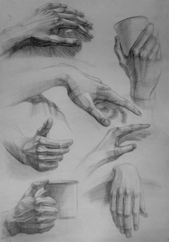 картинки рисунки карандашом руки овощи оптом