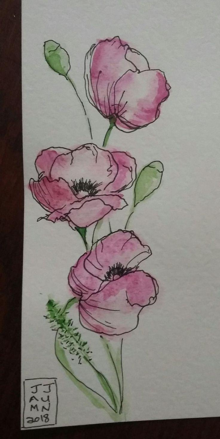 Watercolour And Pen Aquarelle Et Encre Dessin Orchidee