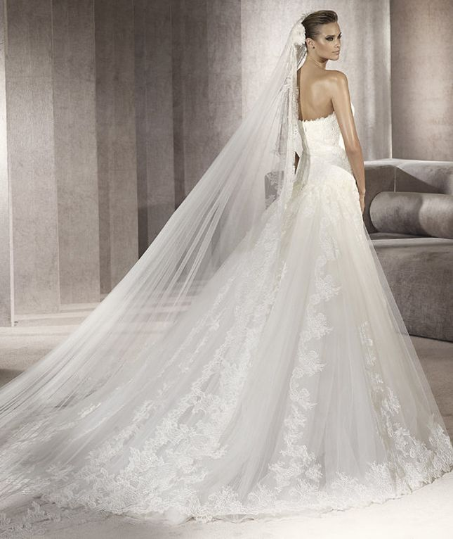 Love The Veil And Long Wedding Train Dresses