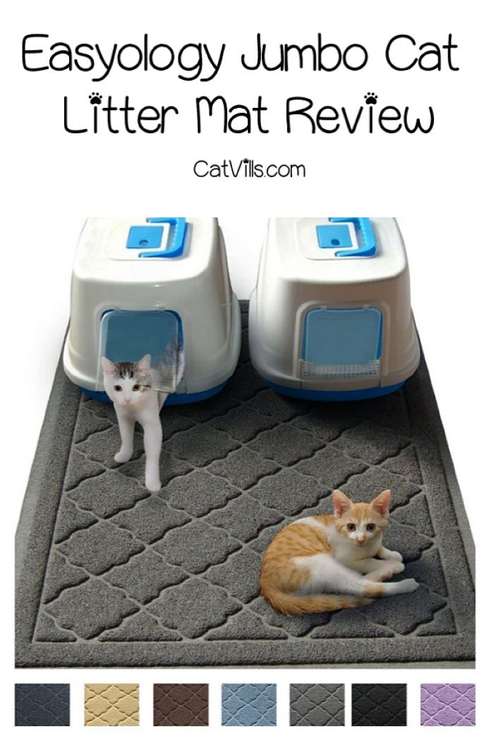 Easyology Jumbo Cat Litter Mat Review Is It Right For You Cat Litter Tray Cat Litter Mat Best Cat Litter