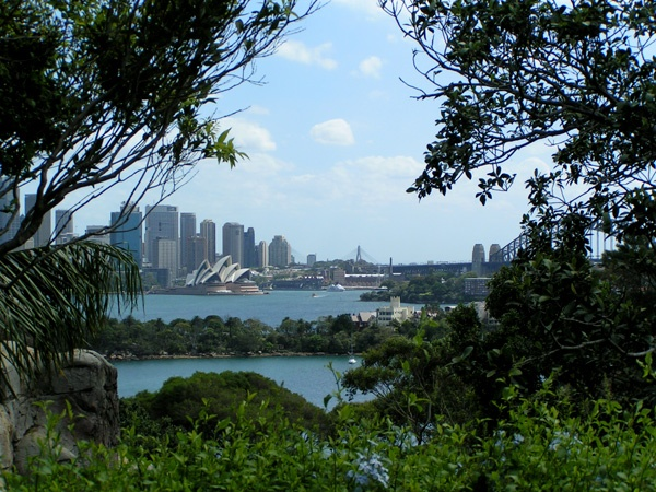 View from Taronga Zoo in Sydney: Animal