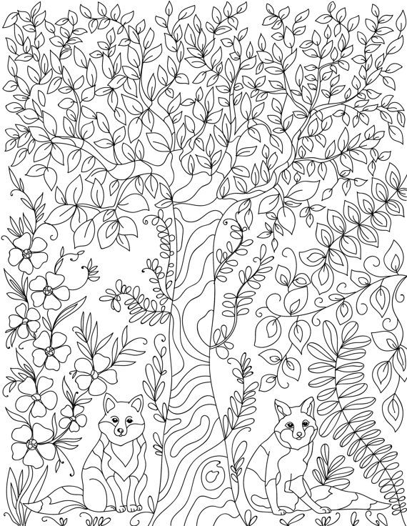 forest colouring page - Birch Tree Branches Coloring Pages