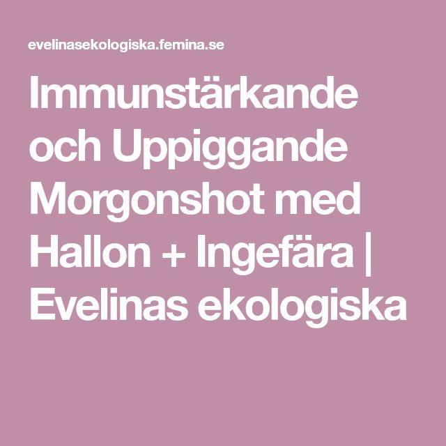 Immunstärkande och Uppiggande Morgonshot med Hallon + Ingefära | Evelinas ekologiska