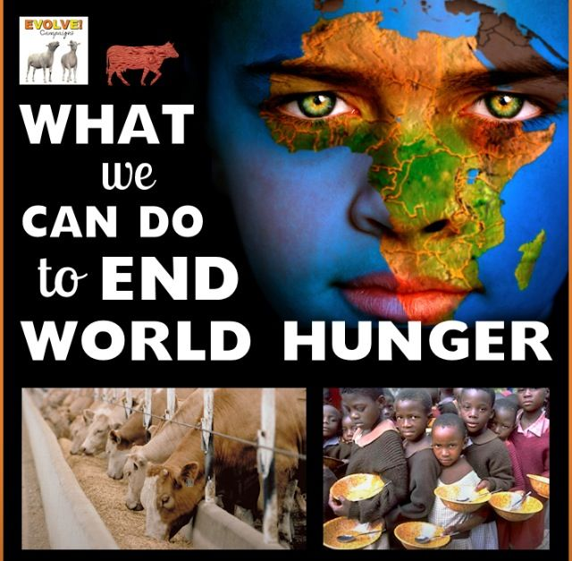 essays on ending world hunger This part of the globalissuesorg web site looks into some of the causes of hunger and the relationship with poverty world hunger causes are found to be in the causes of poverty.