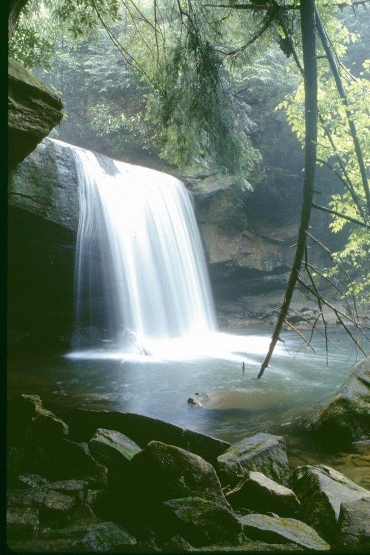 Daniel Boone National Forest Waterfalls