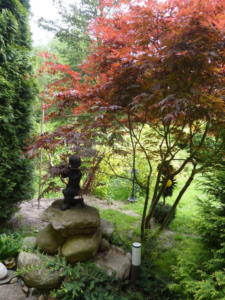 jesienne barwy w maju - 25.05.2015