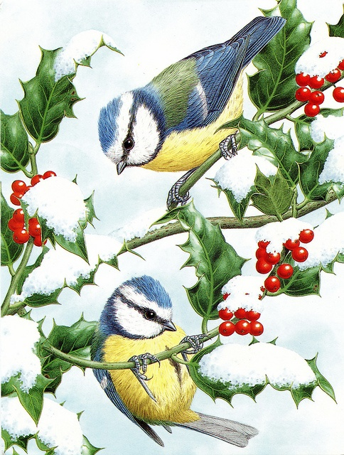 Christmas birds like I used to draw and color when I was in 4th grade.