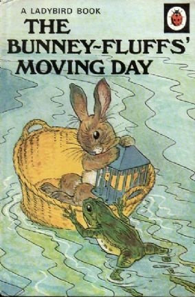 THE BUNNEY FLUFFS' MOVING DAY Ladybird Book Animal Rhymes £6.95