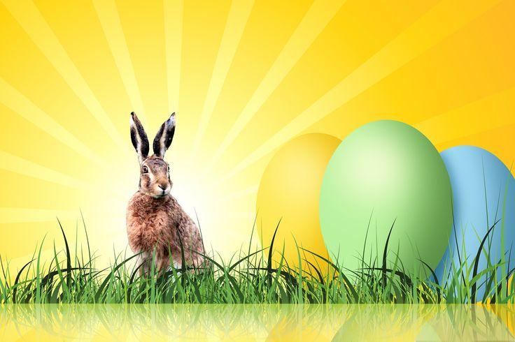 Joyeuses Pâques ! Happy Easter ! Frohe Ostern !  Nahandro vous souhaite du soleil, du repos et de gros festin gourmand ! Mais faites attention à la crise de foie ;-)  Kiss
