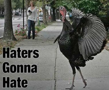 turkey meme | haters gonna hate turkey meme | Gurl.com