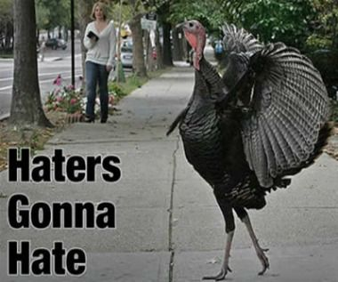 turkey meme | haters gonna hate turkey meme | Gurl.com