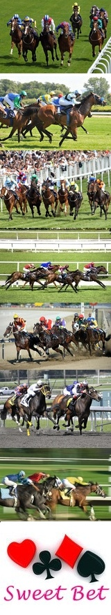 Horse Racing Tracks Directory @ Sweet Bet