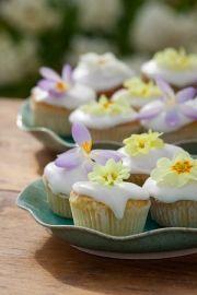 Primrose lemon curd cupcakes