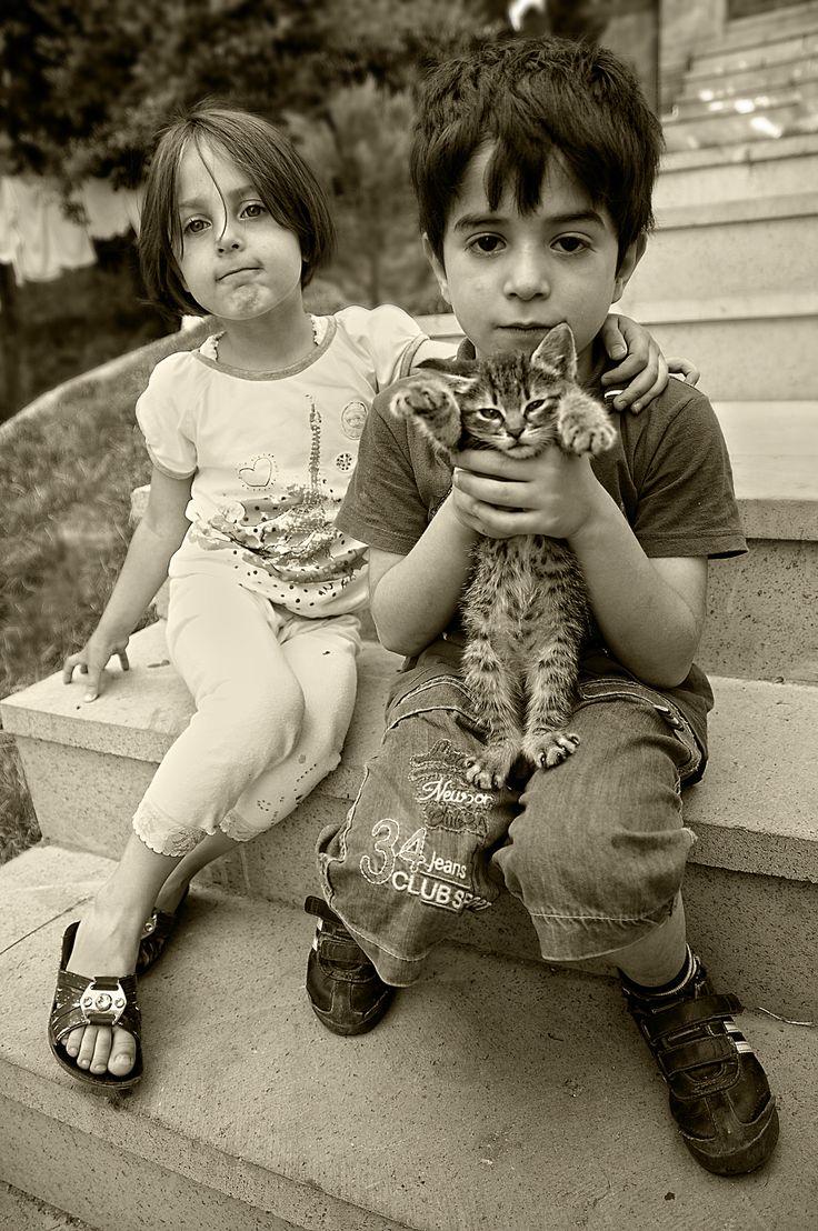 Davy Crockett Stray Cats