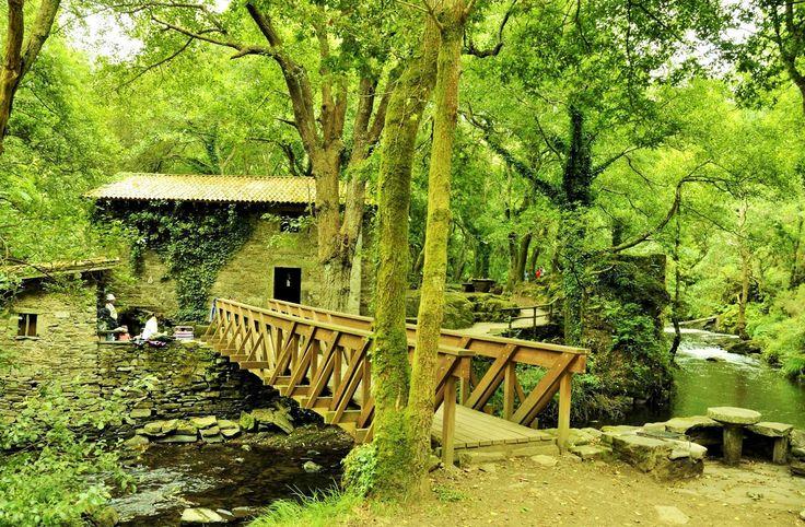 Malpica de Bergantiños,turismo de calidad,gastronomía y cultura: Galicia en fotos