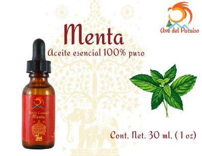El Aceite Esencial de Menta posee un aroma fuerte y muy refrescante. Antiséptico muy potente, estimula la mente, purifica los ambientes densos y genera autoconfianza.