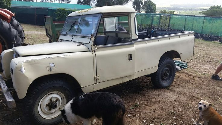 Overall condition fair for landy that has spend most of its life working on a farm