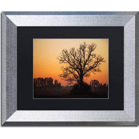 Trademark Fine Art Vermilion Canvas Art by Jason Shaffer, Black Matte, Silver Frame, Size: 11 x 14, Assorted