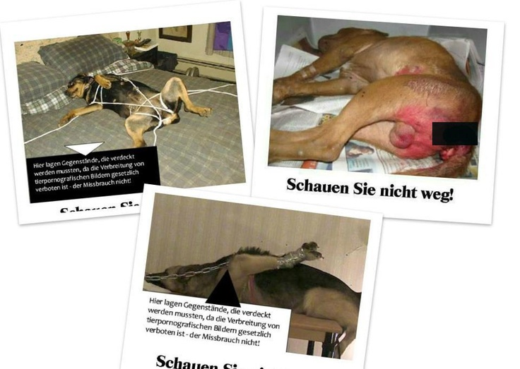 stop abuse animals german bestiality brothels